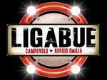 Luciano Ligabue a Campovolo