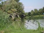 Pescata al Boschetto 004