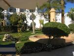 Sharm el Sheikh 007