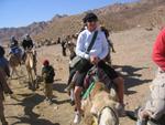 Sharm el Sheikh 182