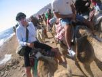 Sharm el Sheikh 183