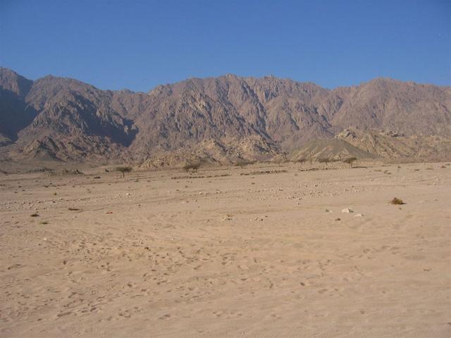Sharm el Sheikh 252
