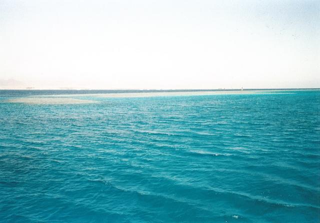 Sharm 14