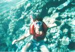 Sharm 27