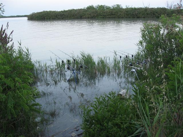 carpfishing nel fiume  po 032