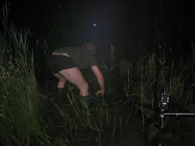 carpfishing nel fiume  po 037