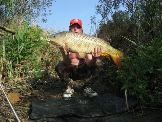 carpfishing nel fiume  po 042
